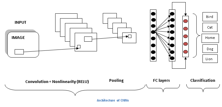 Architecture of CNNs