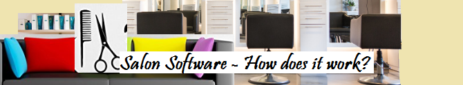 Salon Software – How does it work?