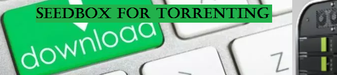 Why You Should Use Seedbox for Torrenting?