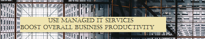 Managed IT Services – To Boost Overall Business Productivity